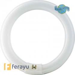 TUBO FLUORESCE CIRCULAR T9 216MM L22/865